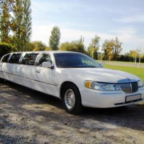 Stag party in Split limousine rental
